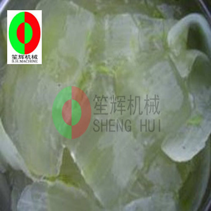 Aloe Cactus Peeling Machine